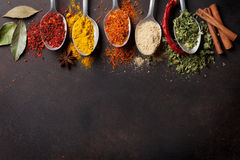 Various spices. Spoons on stone table. Top view with copy space Royalty Free Stock Photography