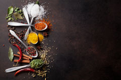 Various spices spoons on stone table Stock Photography