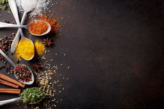 Various spices spoons on stone table. Top view with copy space Royalty Free Stock Photography