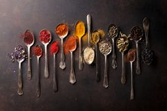 Various spices spoons royalty free stock images