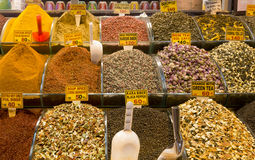 Various spices and tea Royalty Free Stock Image