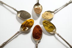 Various spices. On vintage silver spoons Stock Images