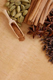 Various spices on the wooden board Stock Image