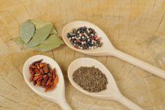 Various spices Royalty Free Stock Photos