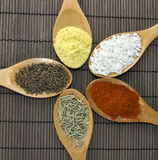Various spices in wooden spoons. Close up Royalty Free Stock Image