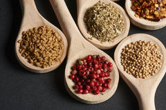 Various of spices in wooden spoons Royalty Free Stock Photography