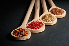 Various of spices in wooden spoons Royalty Free Stock Photo