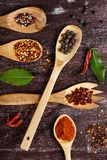 Various spices in wooden spoons on dark brown background. Different types of paprika and peppercorn. Top view stock photo