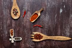 Various spices in wooden spoons on dark brown background. Different types of paprika and peppercorn. Top view. Copy space stock photo
