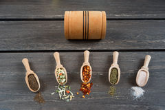 Various of spices and in wooden spoons. Flat lay of spices ingredients chilli, salt, himalayan salt, savory and black pepper. Royalty Free Stock Photography
