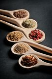 Various of spices in wooden spoons royalty free stock photos