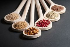 Various of spices in wooden spoons stock photography