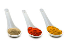 Various spicy powder Stock Photography