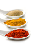 Various spicy powder Stock Photo