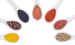 Various spicy powder Stock Images