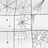 Various Spiders and Webs Stock Photography