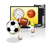 Various sports balls Royalty Free Stock Photo