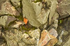 Various stones in the crater of the ancient volcano Girvas royalty free stock photography