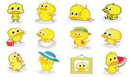 Various styles cartoon chicks Stock Photos