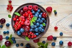 Various  summer berries Royalty Free Stock Image