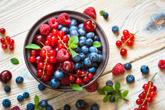 Various  summer berries Stock Images