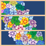 Various summer flowers. Royalty Free Stock Photo