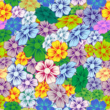 Various summer flowers. Stock Images