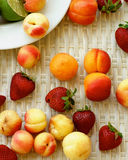 Various Summer Fruits Royalty Free Stock Photography