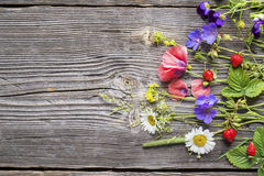Various Summer Wild Flowers On Wooden Background Royalty Free Stock Images