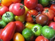 Various Tomatoes. Royalty Free Stock Photo