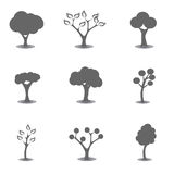 Various tree silhouettes Royalty Free Stock Images