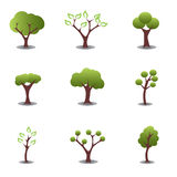 Various trees Royalty Free Stock Photos