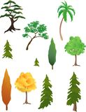 Various trees. Vector based illustration of various kinds of trees Stock Image