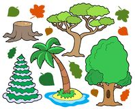 Various trees collection 1 Royalty Free Stock Photos