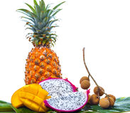 Various tropical fruits on green palm leaf Stock Image