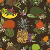 Various tropical fruits Stock Image