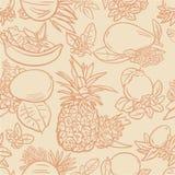 Various tropical fruits Stock Photo