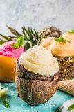 Various tropical ice cream sorbet. Summer holiday vacation concept, set various tropical ice cream sorbets, frozen juices in pineapple, grapefruit and coconut Stock Photography