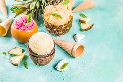 Various tropical ice cream sorbet. Summer holiday vacation concept, set various tropical ice cream sorbets, frozen juices in pineapple, grapefruit and coconut Stock Photos