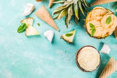 Various tropical ice cream sorbet. Summer holiday vacation concept, set various tropical ice cream sorbets, frozen juices in pineapple, grapefruit and coconut Royalty Free Stock Photography