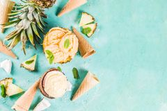 Various tropical ice cream sorbet. Summer holiday vacation concept, set various tropical ice cream sorbets, frozen juices in pineapple, grapefruit and coconut Royalty Free Stock Images