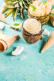Various tropical ice cream sorbet. Summer holiday vacation concept, set various tropical ice cream sorbets, frozen juices in pineapple, grapefruit and coconut Royalty Free Stock Image