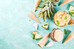 Various tropical ice cream sorbet. Summer holiday vacation concept, set various tropical ice cream sorbets, frozen juices in pineapple, grapefruit and coconut Stock Image