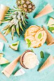 Various tropical ice cream sorbet. Summer holiday vacation concept, set various tropical ice cream sorbets, frozen juices in pineapple, grapefruit and coconut royalty free stock photo