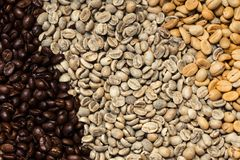 Various type of arabica coffee been roasted multiple colors. And stage of roast timing royalty free stock photo