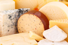 Various type of cheese Stock Image
