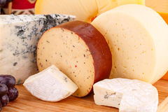 Various type of cheese Royalty Free Stock Images