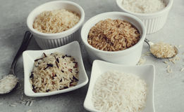 Various type of rice Royalty Free Stock Photo