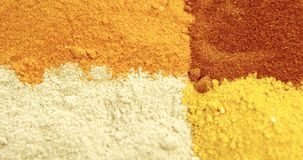 Various type of spices 4k. Close-up of various type spices 4k stock video