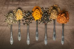 Various type spices on spoons. On craft background Stock Photos